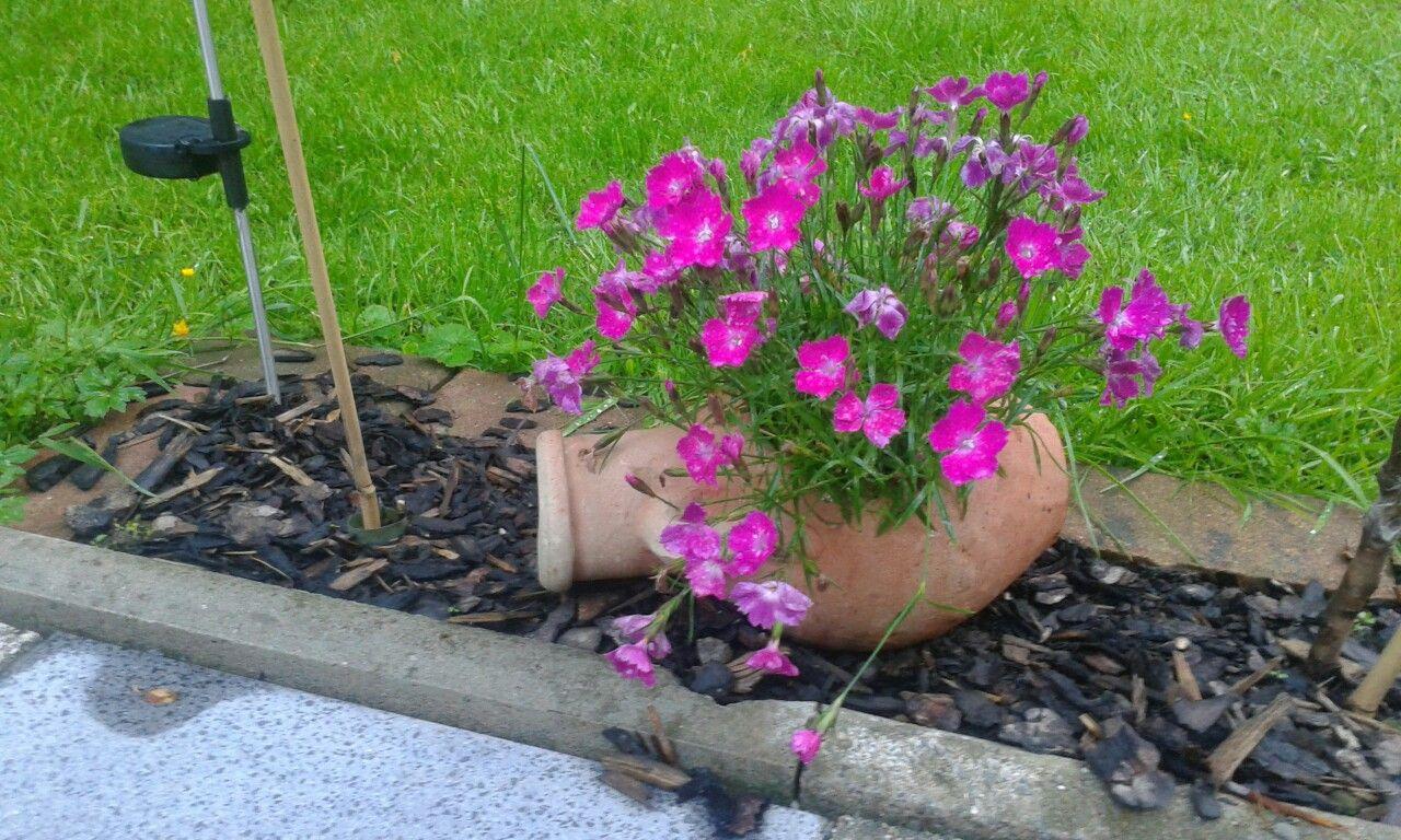 Jak využít staré květináče Zdroj: Pinterest